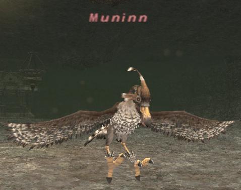 Muninn