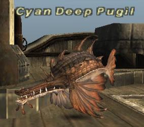 Cyan Deep Pugil