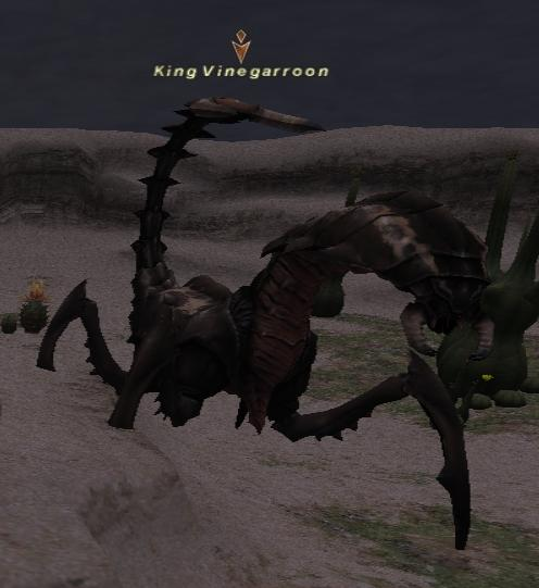 King Vinegarroon