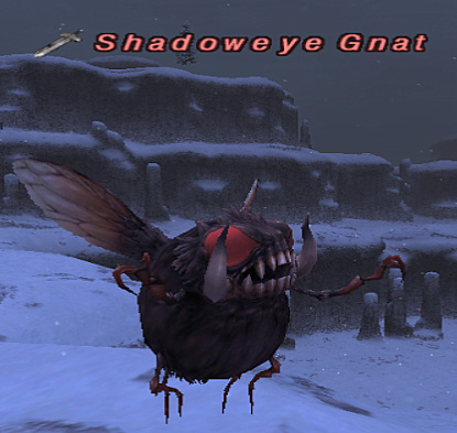 Shadoweye Gnat