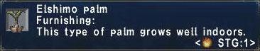 Elshimo Palm