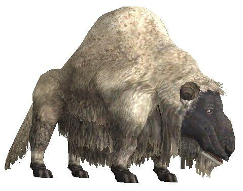 Sheep (MON)