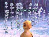 Trust: Sakura