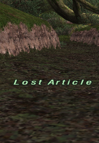 Lost Article.png