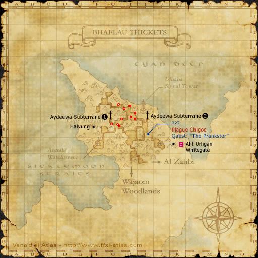 Totoroon's Treasure Hunt