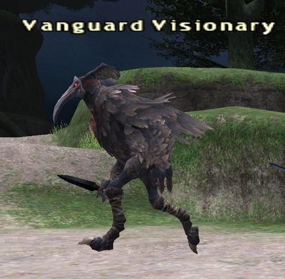 Vanguard Visionary