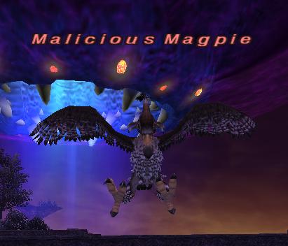 Malicious Magpie