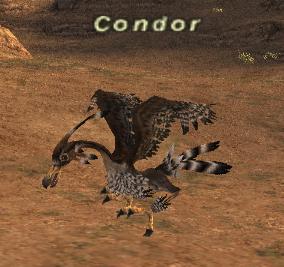 Condor (Monster)