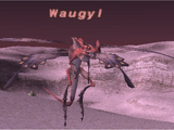 Waugyl