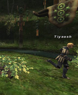 Tiyaash