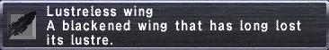 Lustreless Wing