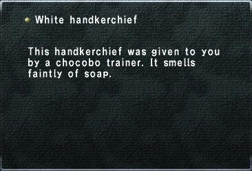 WhiteHanderchief.jpg