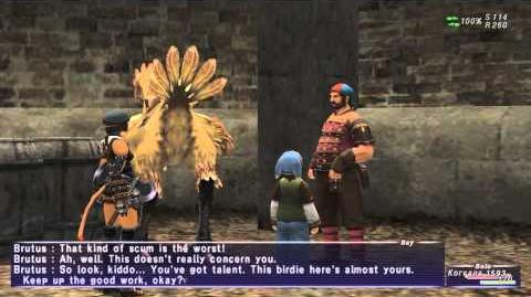 «FFXI-Movie»_0136_BST_1_-_Chocobo's_Wounds