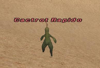 Cactrot Rapido
