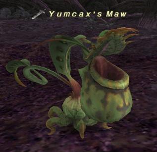 Yumcax's Maw