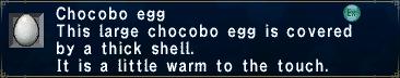 Chocobo Egg (Little Warm)