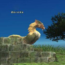 Boroka