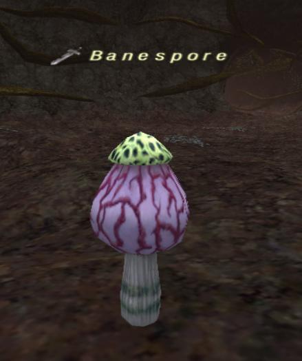 Banespore