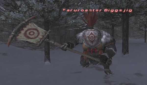 Taruroaster Biggsjig