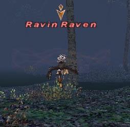 Ravin Raven