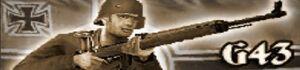 Gewehr 43 icon.jpg