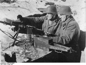 MG 81.jpg