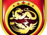 China national team