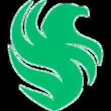 Team Falconslogo square.png