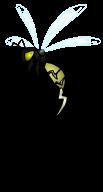 Zeus' Hornet