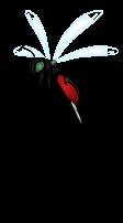Blade Bee (Deliverance)