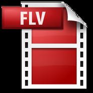 Icon FLV