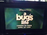 Video trailer A Bug's Life 2.jpeg