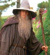 Gandalf (Ian Mckellen; TLOTR1)
