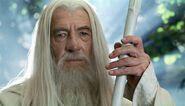 Gandalf (Ian Mckellen; TLOTR 2)