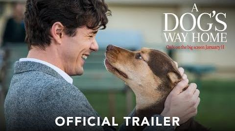 A_DOG'S_WAY_HOME_-_Official_Trailer_(HD)