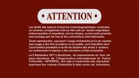 Sony R1 Warning Screen French.jpg