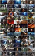 The Tree of Life 2011 Poster