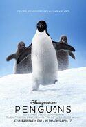 Penguins 2019 Poster