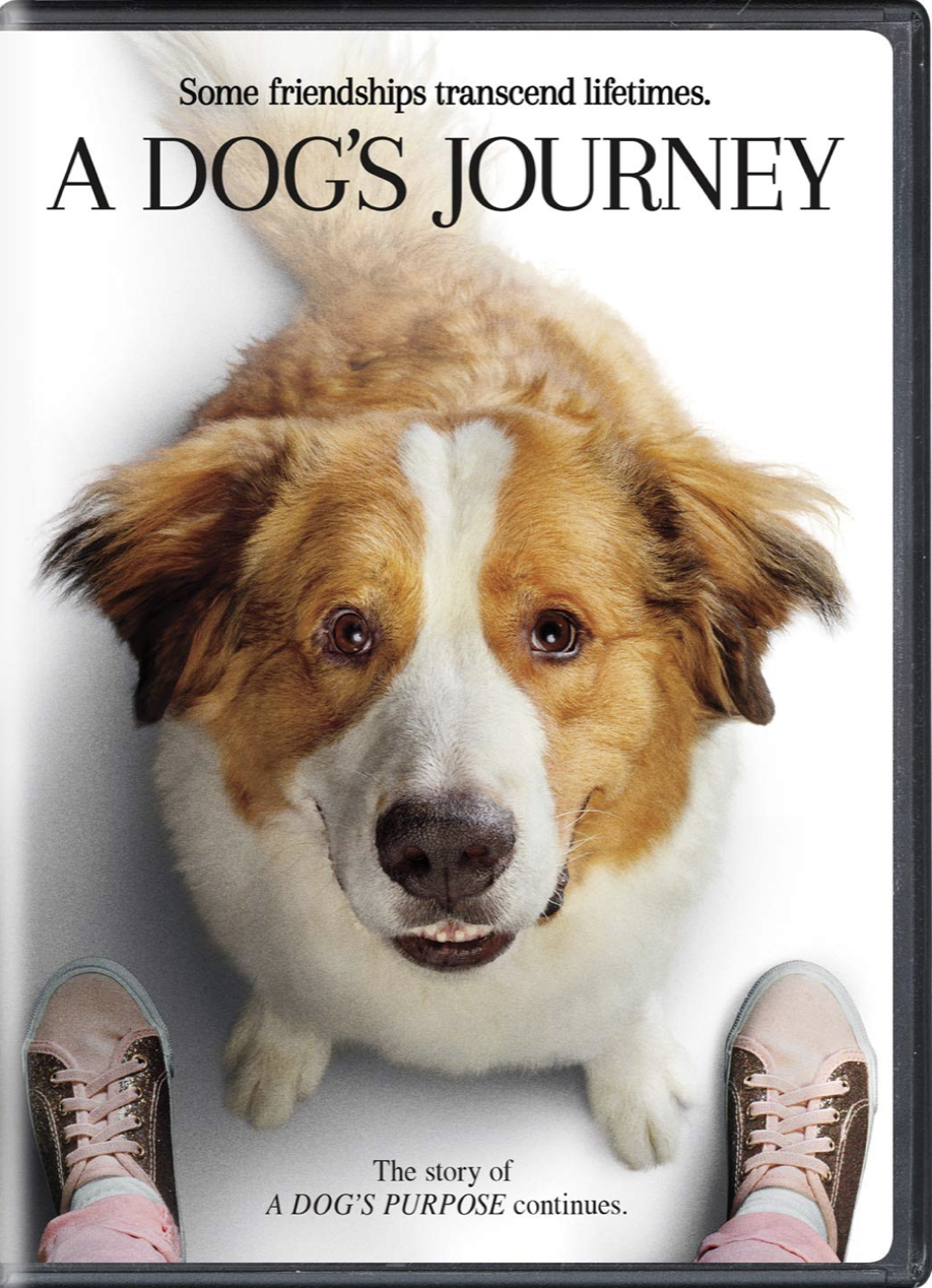 A Dog's Journey/Home media