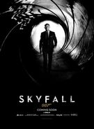Skyfall Teaser Poster Classic Bond Shades Gray 1337271907