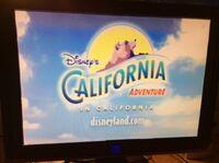 Disney's California Adventure promo.jpeg