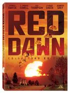 Red dawn dvd large