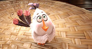 Angry-birds-2 cls850 114406 1004 mkt still LG rgb