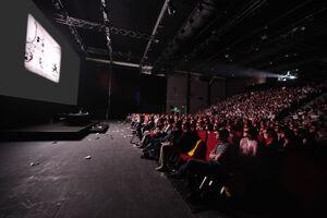 2013 festi projection mickey002