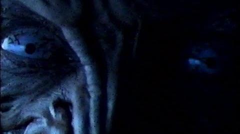 Freddy vs. Jason/Home media