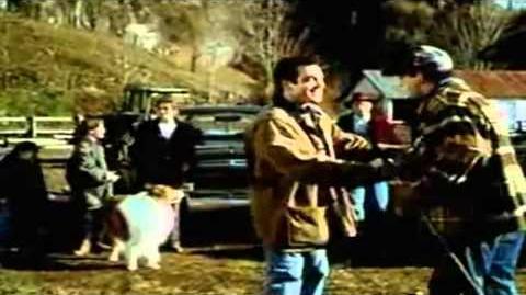 Lassie (1994 film)