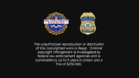 FBI Anti-Piracy Warning Homeland Security Investigations Special Agent Screen.png