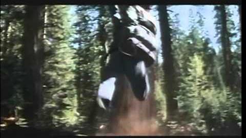 Bushwhacked (film)