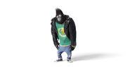 Sing Gorilla 001