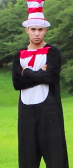 Cat in the hat.png